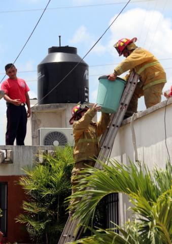 Abandonan tambos con químico altamente tóxico en la Región 259