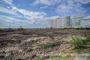 Gobierno-cancún-destrucción-del-manglar-Tajamar